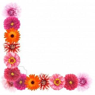 flower+border+2