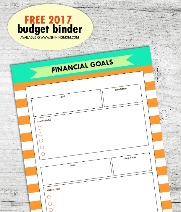 free-financial-binder