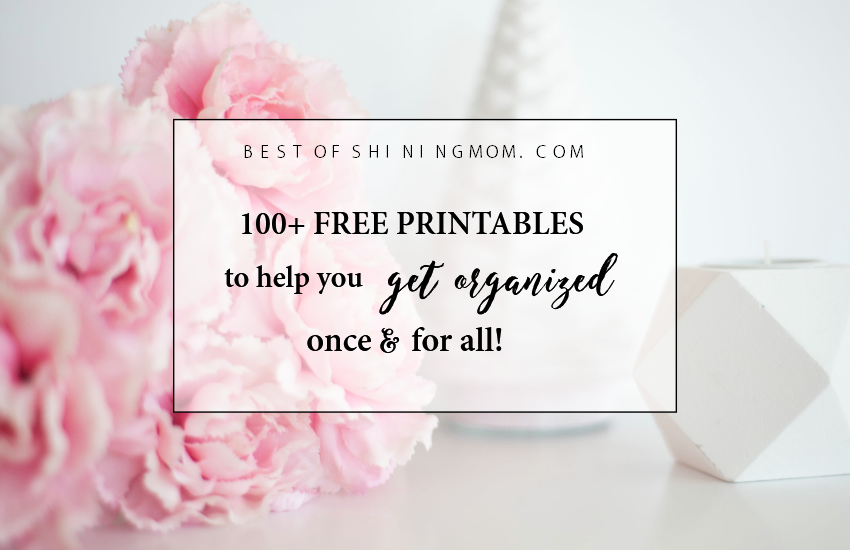 image relating to Free Printable Organizing Sheets identified as Earlier mentioned 100 Free of charge Printables in the direction of Set up Your Lifestyle within just 2017!