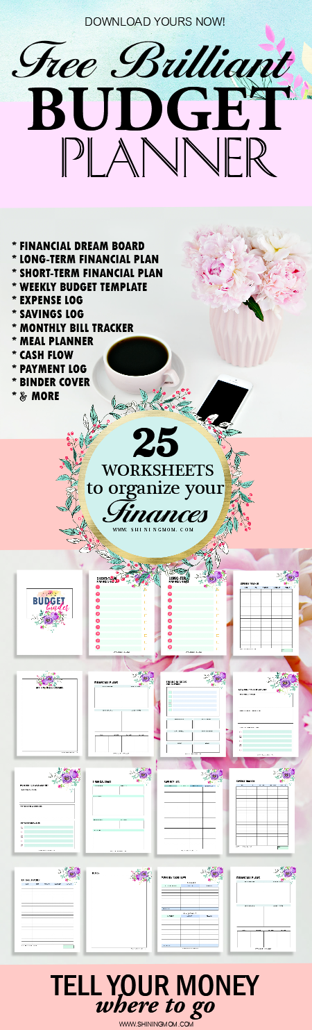 budget template binder 20 free finance worksheets